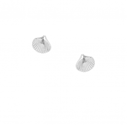 Серьги серебряные Ракушки пусеты Youko